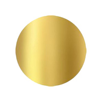 8 Inch Round Gold 2mm Disc